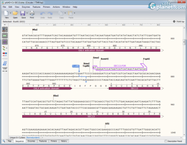 SnapGene Screenshot2
