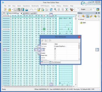 Free Hex Editor Neo Screenshot3