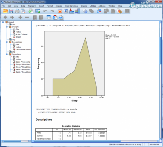IBM SPSS Statistics Screenshot5