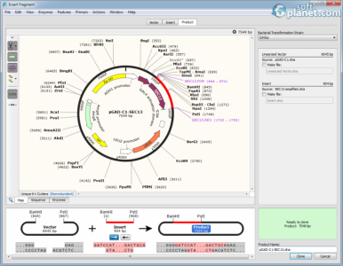 SnapGene Screenshot5