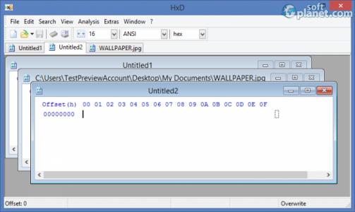 HxD Hexeditor Screenshot4