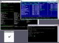 Cygwin Screenshot2