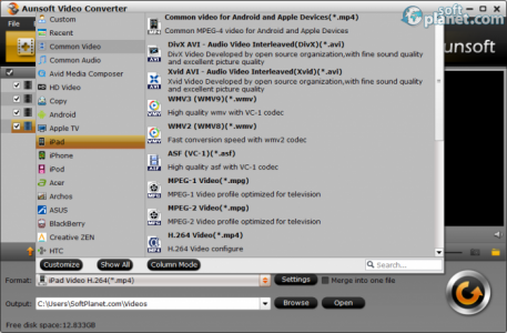 Aunsoft Video Converter Screenshot3