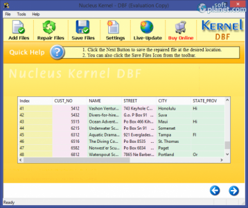Nucleus Kernel DBF Recovery Screenshot2