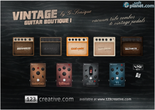 Vintage guitar boutique 1.0