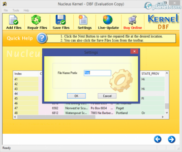 Nucleus Kernel DBF Recovery Screenshot3