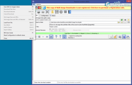 Bulk Image Downloader Screenshot4