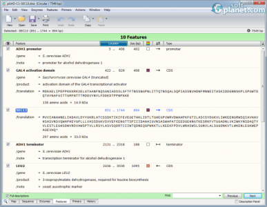 SnapGene Screenshot4