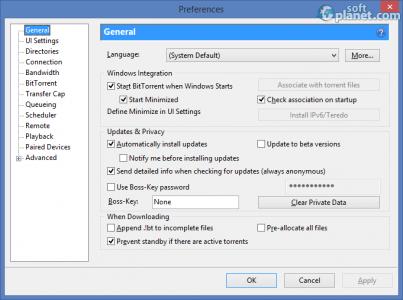 BitTorrent Screenshot3