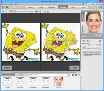 FaceFilter3 Pro Screenshot3