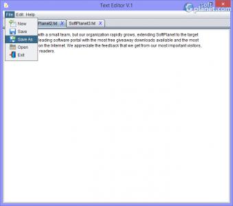 Text Editor Screenshot2